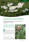 Greencare Blüten