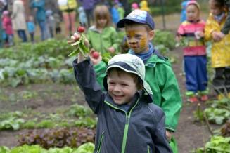 GemüseAckerdemie (2)