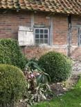 Immergrüner Buchs schafft Kontraste. Garten Rosenhaege, Niederlande