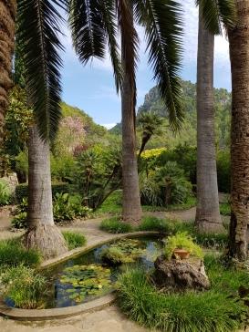 Einblick in die Landschaft des Tramuntanagebirges